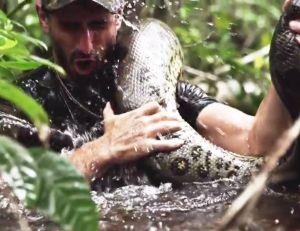 "Affiche du film ""Anaconda"""