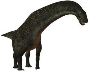 Reconstitution d'un titanosaure