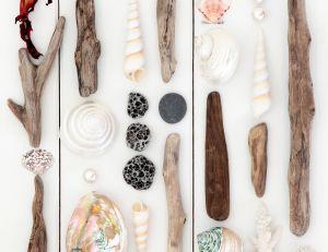 Des idées pour réaliser une décoration originale avec du bois flotté