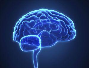 La Darpa travaille sur des implants permettant d'améliorer la mémoire