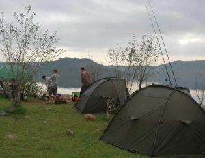 Camp de pêche pour la carpe