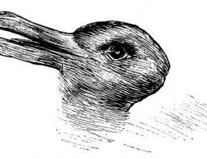 On peut voir dans ce dessin allemand du 19ème siècle un canard ou un lapin