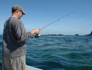 Choisir sa canne de pêche en mer