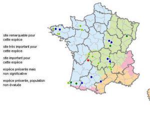 Situation actuelle des moules perlière en France, source Natura 2000