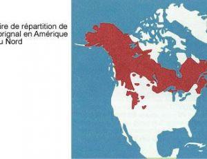 Carte de répartition des orignaux en Amérique du Nord