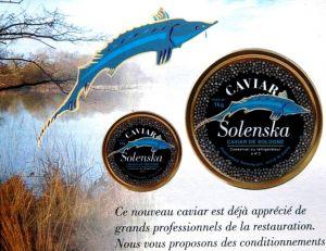 Le caviar solognot