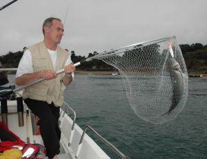 Le soir, le pêcheur peut suivre les chasses en bateau