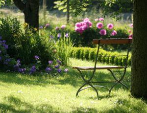 Check list entretenir son jardin tout au long de l 39 ann e for Entretien jardin janvier