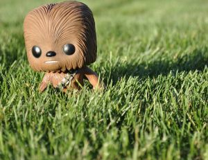 Mini Chewbacca dans l'herbe - copyright Alana / Flickr CC.