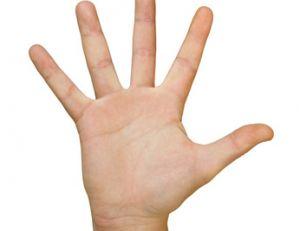 Chiromancie : les formes de la main et des doigts