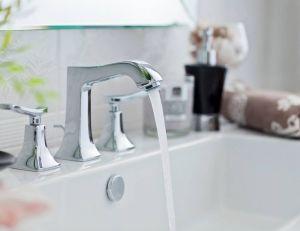 Choisir un mélangeur : un robinet de style traditionnel plus pratique et économique / iStock.com -gzorgz