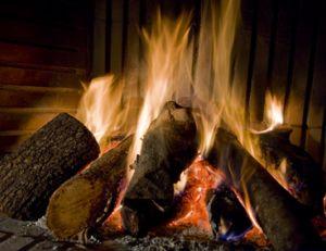 Le choix du bois de chauffage