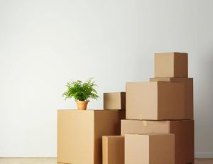Comment recycler ses cartons de déménagement ?