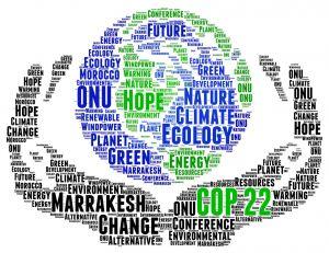 COP22 : la 22e conférence des parties sur le changement climatique débute au Maroc