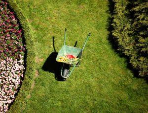Créer un jardin