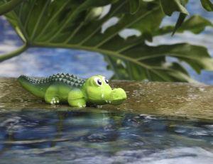 Un propriétaire d'une villa située non loin du parc des Everglades a découvert un crocodile de 2 m dans sa piscine