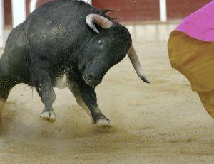 Le débat autour de la corrida