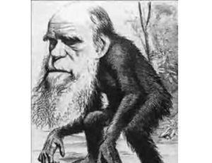 Charles Darwin descend du singe, caricature parue en 1859