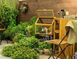 Décoration végétale : quelques idées