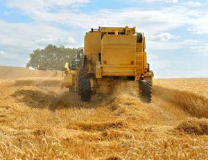 Devenir agriculteur