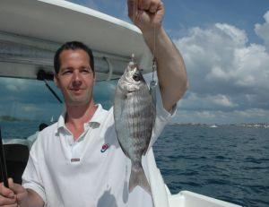 La pêche à soutenir fonctionne vraiment bien pour la dorade