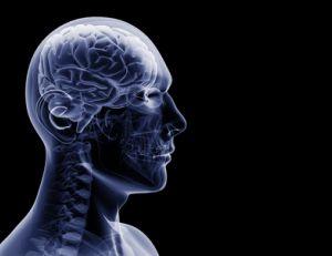 Epilepsies : savoir les identifier
