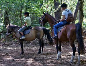 Où pratiquer l'équitation en région parisienne ?