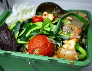 Gaspillage alimentaire : comment l'éviter ?