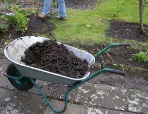 Utiliser le fumier dans son jardin