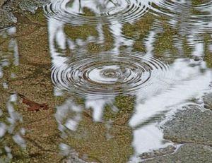Filtrer l'eau de pluie