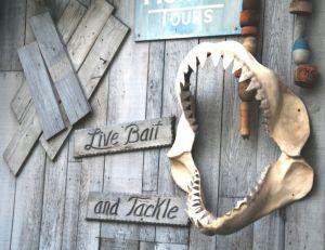 Mâchoire de requin blanc à l'entrée d'un magasin d'appâts