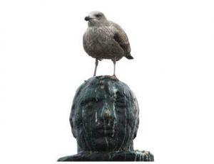 Goéland sur une statue