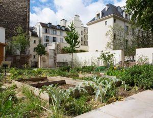Good news : l'agriculture urbaine, l'avenir des citadins ? / iStock.com -SilviaJansen