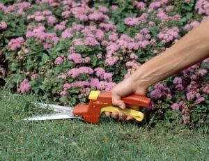 Greffoirs, couteaux et ciseaux : tout savoir sur les outils qui coupent