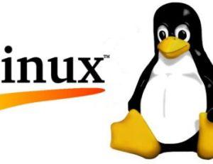 Héberger son site internet sous linux
