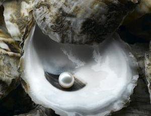 La perle a été posée pour la photo