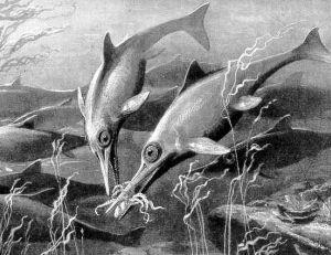 Ichtyosaures : la ressemblance avec les dauphins est troublante