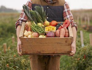 Les idées reçues sur les légumes