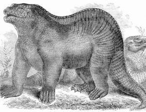 L'iguanodon fût d'abord imaginé comme un gros lézard