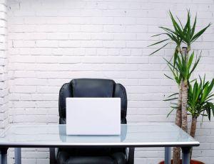 Installer des plantes au bureau