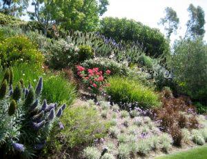 Planter dans un jardin en pente