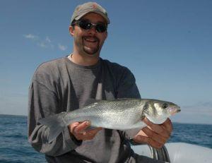 Oragniser sa journée de pêche en bateau