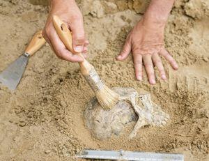 Venez vous initier à l'archéologie pendant les JNA