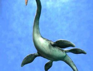 Elasmosaure