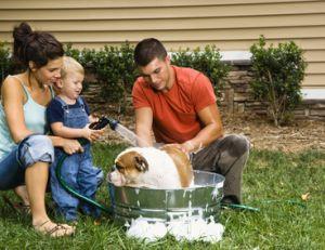 Laver son chien chez soi