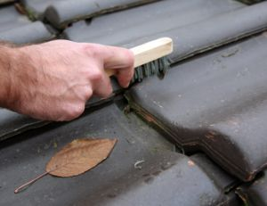 nettoyer toiture nettoyage et entretien d 39 une toiture. Black Bedroom Furniture Sets. Home Design Ideas