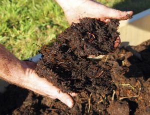 Enrichir son jardin avec du terreau