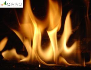 Découvrez les avantages d'une cheminée au bioéthanol