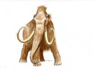 Mammouths et mastodontes