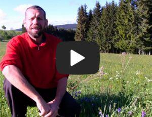 """Construction d'une maisonnette autonome en Auvergne, """"Eldamar"""" la maison en langage Elfique"""